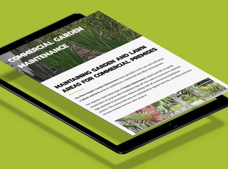 Mobile friendly web design for The Plant People